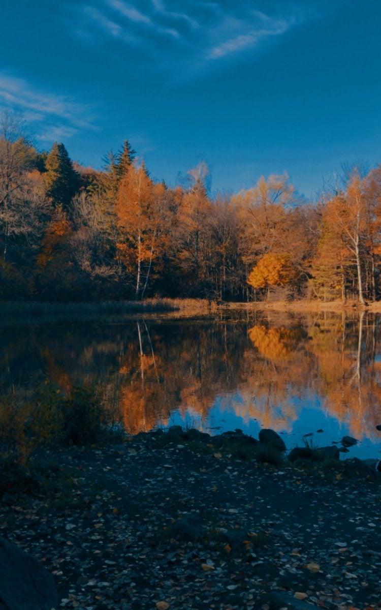 boyana lake hike