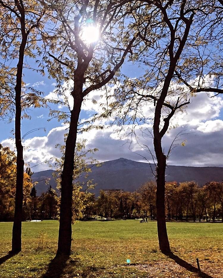 south park vitosha